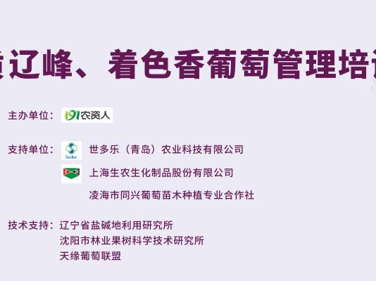 2018辽峰、着色香葡萄培训