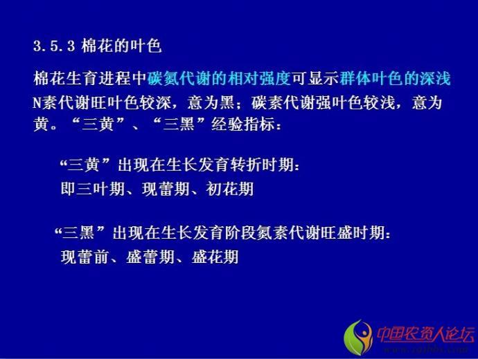 物栽培学课件 南京农业大学 包含主要农作物,精美的ppt