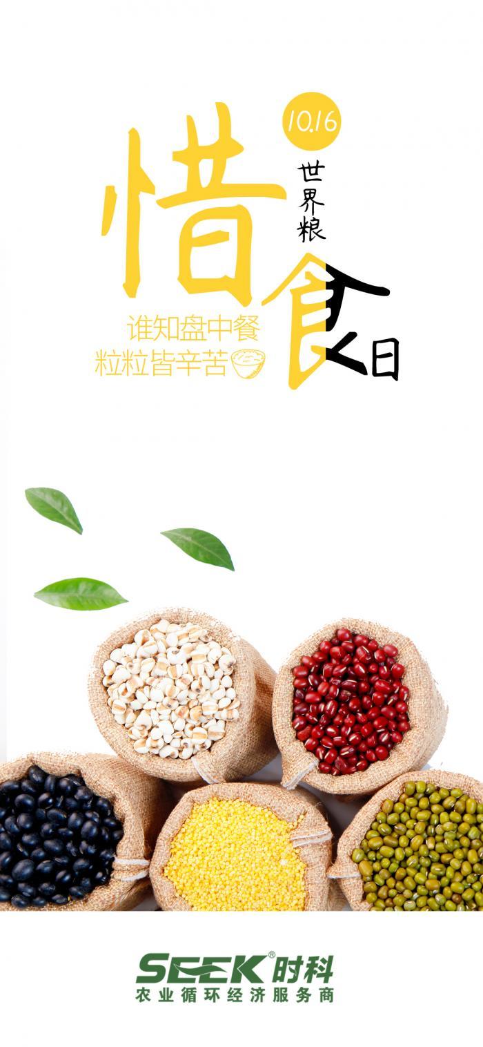 世界粮食日,时科碳肥呼吁大家:珍惜每一粒米,关爱每一方土,守护每一图片